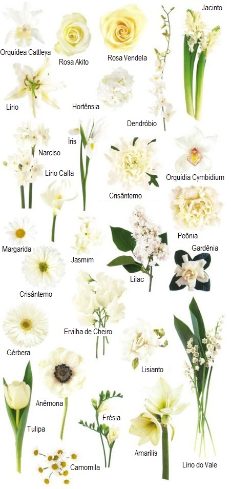 flores_brancas_buque_casamento