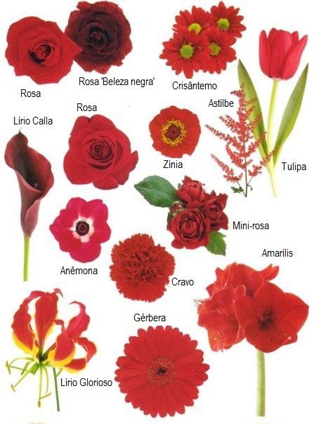 flores_vermelhas_buque_casamento