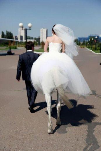 casamento_noiva_cavalo_estranho