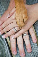 casamento_animais_estimacao_cachorro_alianca_01
