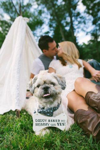 casamento_animais_estimacao_cachorro_save_the_date_03