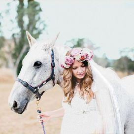 casamento_animais_estimacao_cavalo_02