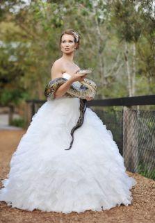 casamento_animais_estimacao_cobra_01
