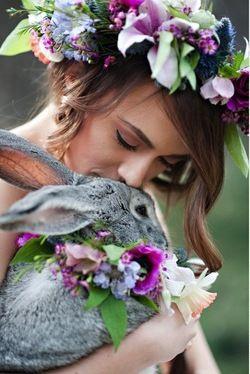 casamento_animais_estimacao_coelho_01