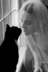 casamento_animais_estimacao_gato_08