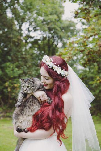 casamento_animais_estimacao_gato_11