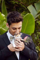 casamento_animais_estimacao_gato_14