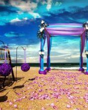 casamento_paleta-de-cores_azul-turquesa_roxo_teal_purple_peacock_decoracao_05